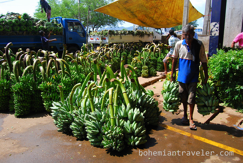 More bananas at Dambulla wholesale market in Sri Lanka.