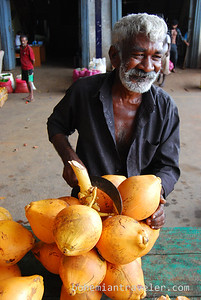 Cutting a King Coconut at Dambulla wholesale market in Sri Lanka.