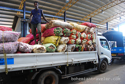 Trucks of produce at Dambulla wholesale market in Sri Lanka.