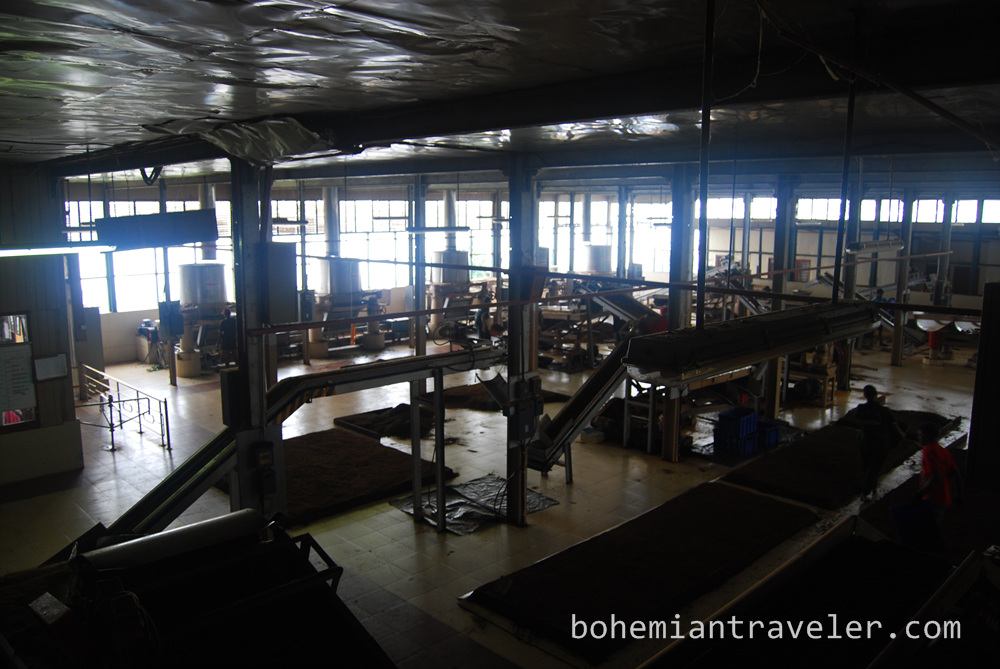 inside Danbatenne Tea Factory in Sri Lanka