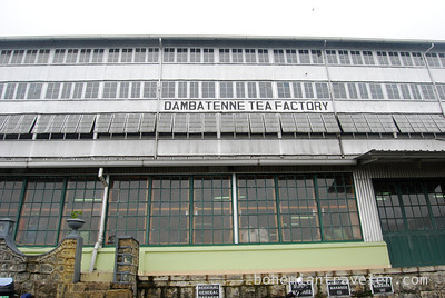 Danbatenne Tea Factory