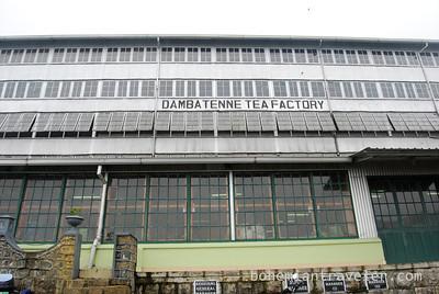 Danbatenne Tea Factory