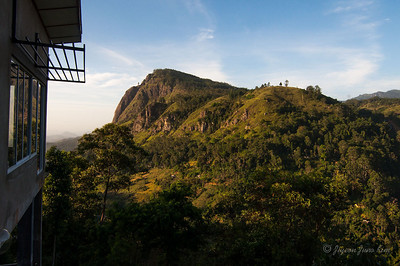 The view of Ella Rock and Ella Gap from my guesthouse