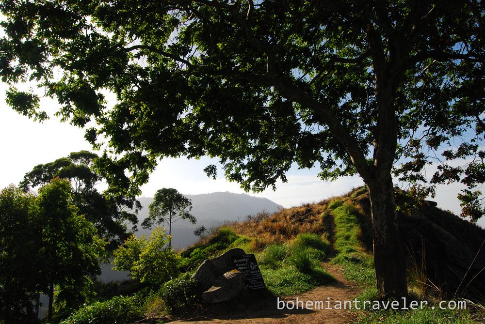 The view from small Adam's Peak in Ella, Sri Lanka.
