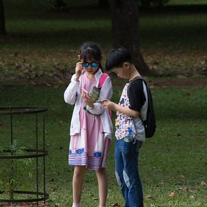 Could not resist including this shot.  These Chinese kids were surrounded by stunning gardens but spent most of their time looking only at their mobile phones.