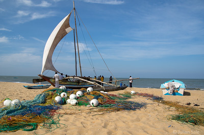 These fishing boats would go out to fish at night and take tourists out during the day.   Some are finding the tourist business more lucrative than fishing.