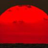 Sun set in Galle