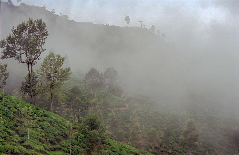 SRI LANKA 264