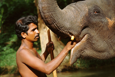The island of Sri Lanka