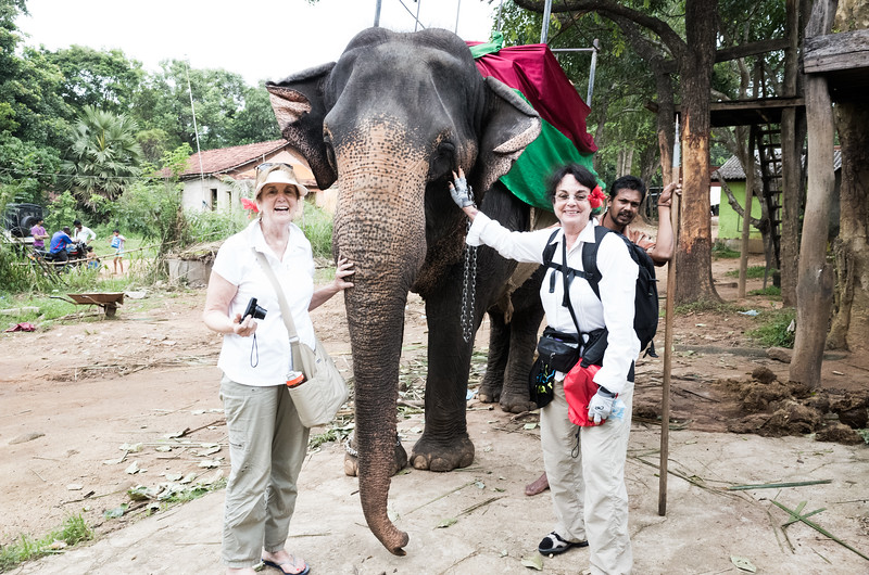 Elephant ride we took. Oh my look at how the Cushing's Disease (I didn't know I had at the time) fattened my face and core! distorted