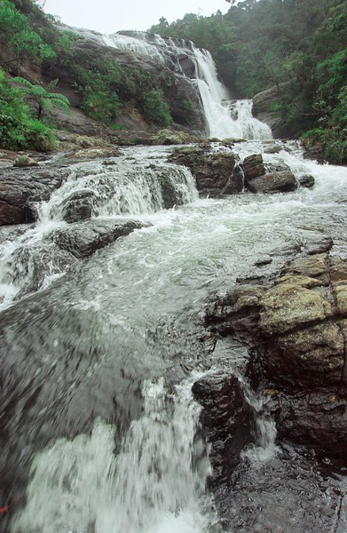 SRI LANKA 344