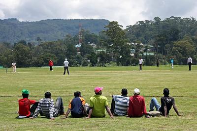 Cricket - Nuera Elia