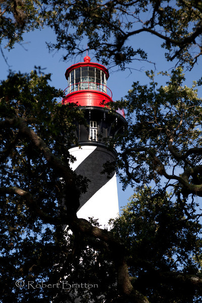 Lighthouse thru the Trees