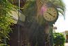 006 St Augustine Clock