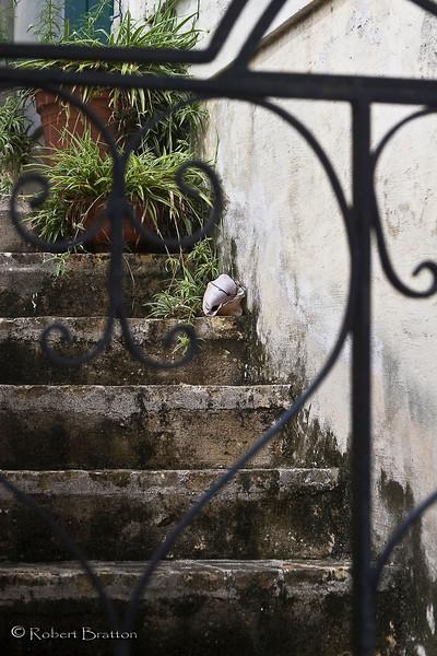 Stairs Through the Iron Gate