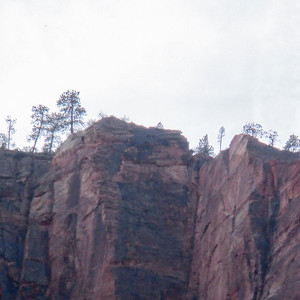 Zooming in to see trees on top of the cliffs.