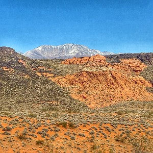 Red Cliffs Desert Preserve