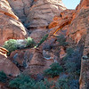 Red Cliffs Desert Preserve<br /> Elephant Arch