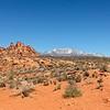 Red Cliffs Desert Preserve