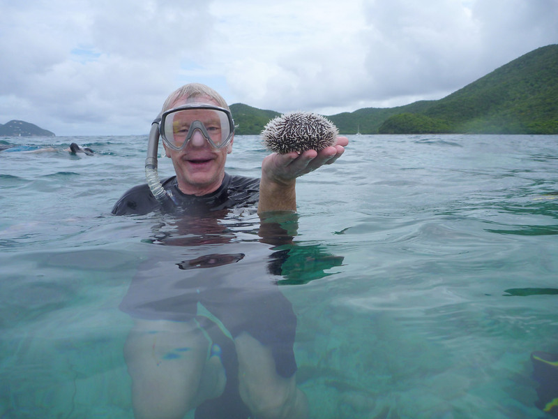 "Rich with a ""sea egg"" a holdable sea urchin"