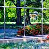 Window reflection at the Missouri Botanical Gardens.