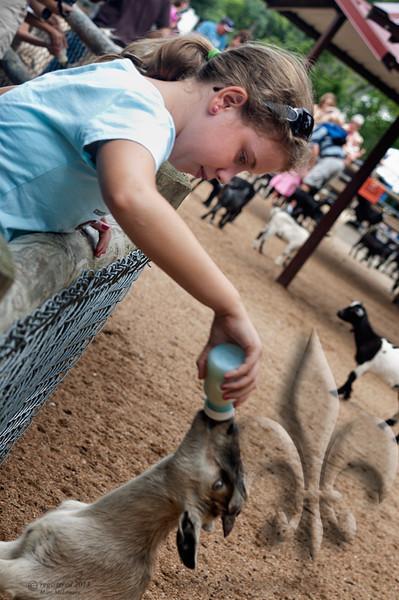 Taylor at Grant's Farm