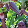 "Cosol our Tour Guide on St Lucia 11/22/06    <a href=""http://www.cosol-tours.com"">http://www.cosol-tours.com</a>"