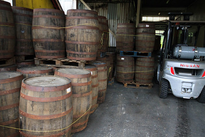 Barrels of Rum, St Lucia Distilleries