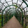 Upper Garden trellis