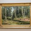 In The Birch Tree Forest by Ivan Shishkin - room 27
