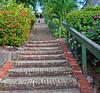 99 steps