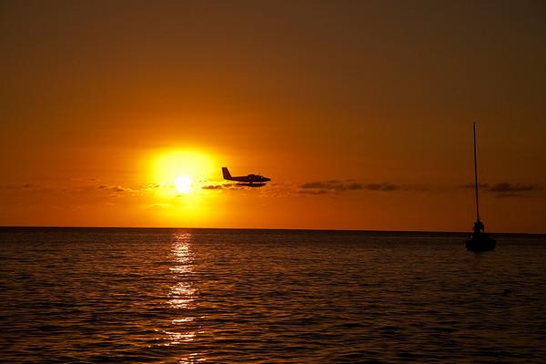 Sunset Flight_Ted Davis_310_430_2639