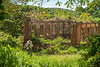 Ruins_at_Mount_Victory_10603_29_Ted Davis