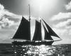 Afternoon Sail 8x10SHARP_10703_139_Ted Davis_310_430_2639