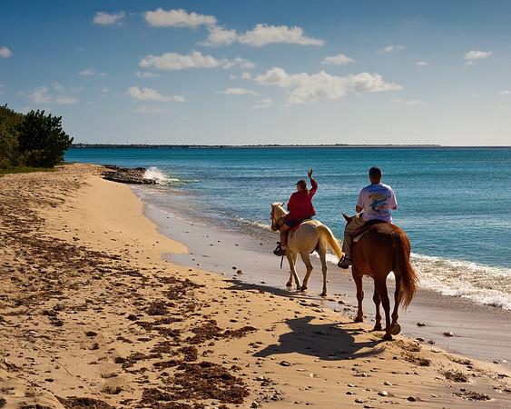 Paul & Jill's Horseback tours