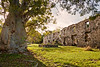 Butler_Bay_Ruins_41203-096_photo_Ted_Davis_310-430-2639