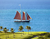 Roseway_sails_past_The_Buccaneer_Hotel_1130636_photo_Ted_Davis_310-430-2639