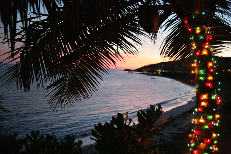 Tropical Christmas, St. Croix, US Virgin Islands