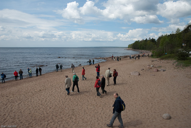 A beach near Ushkovo, west of St.Petersburg