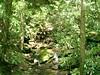 FR 711 waterfall