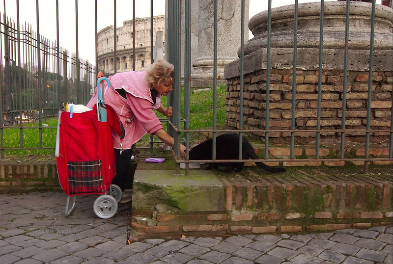 Cat lady in front of Il Colloseo