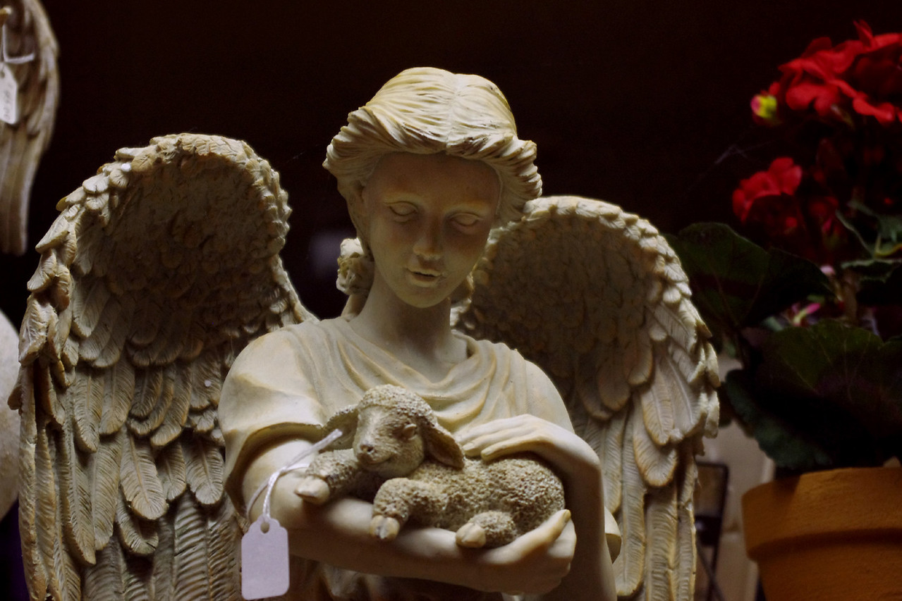 Angel and lamb, shop window, Saint Genevieve, Missouri.