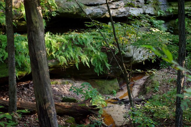 Pickle Springs Natural Area near Saint Genevieve, Missouri.