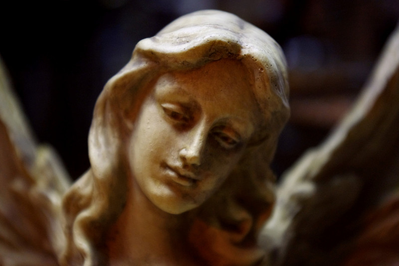 Angel detail, shop window, Saint Genevieve, Missouri.