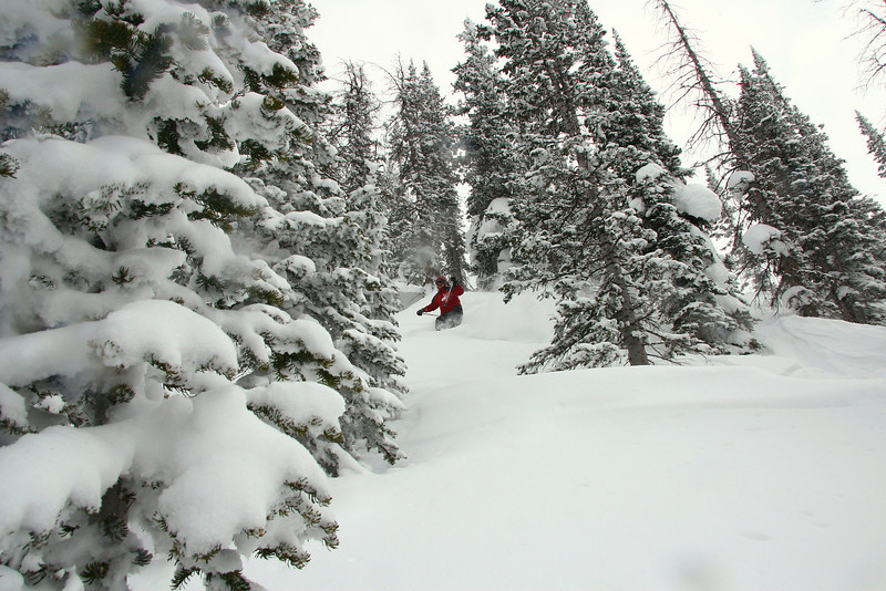 Me skiing in the back country with the Steamboat Powder Cats.