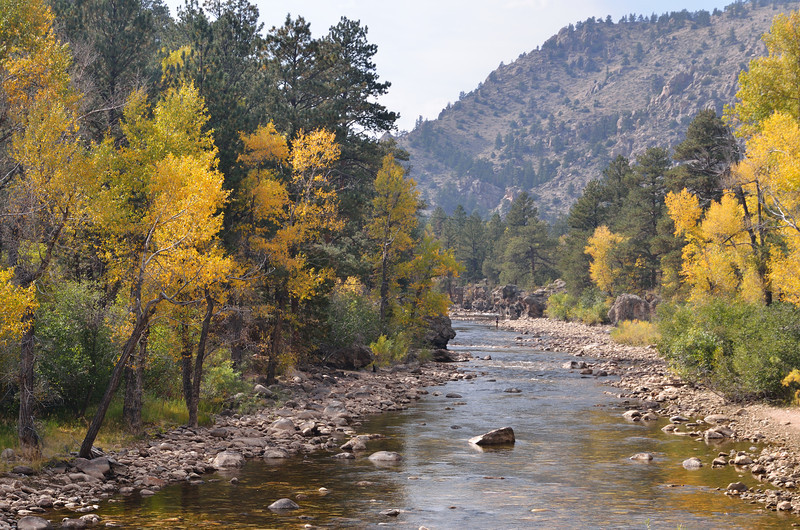 View of the Cache La Poudre River off Colorado 14.