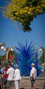 Chihuly Glad Exhibit @ Denver Botanic Gardens