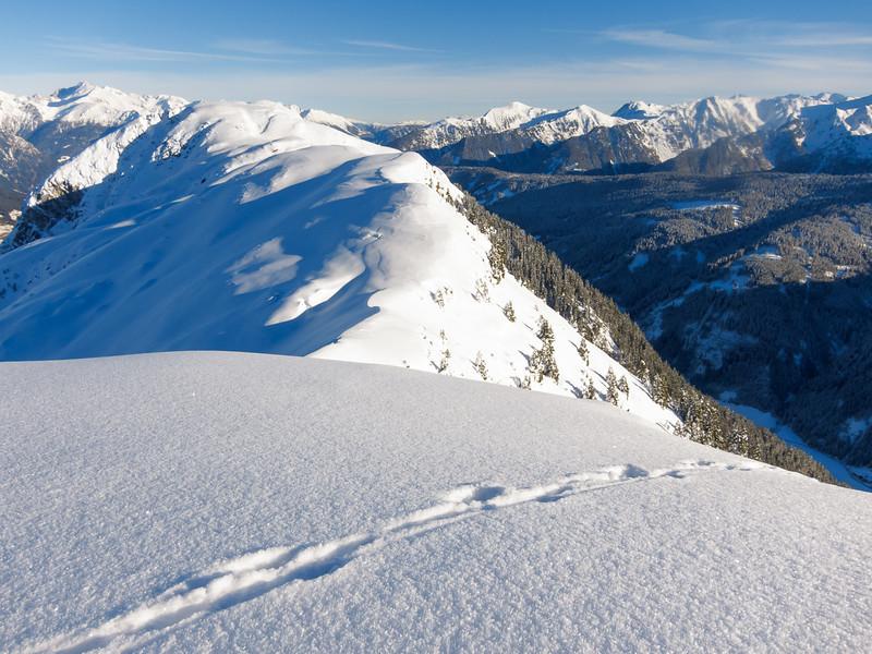 Am Gipfel der Wurzer Alpenspitze; auch Hasen schauen hier ab und zu vorbei