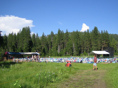 Music Meadow