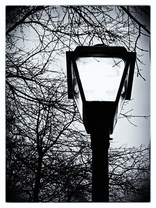 Street Light shines brightly in an otherwise stark and cold setting.